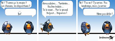 Dalpaz
