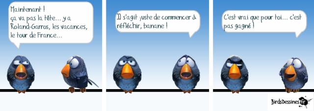 Birds-JIQ-02